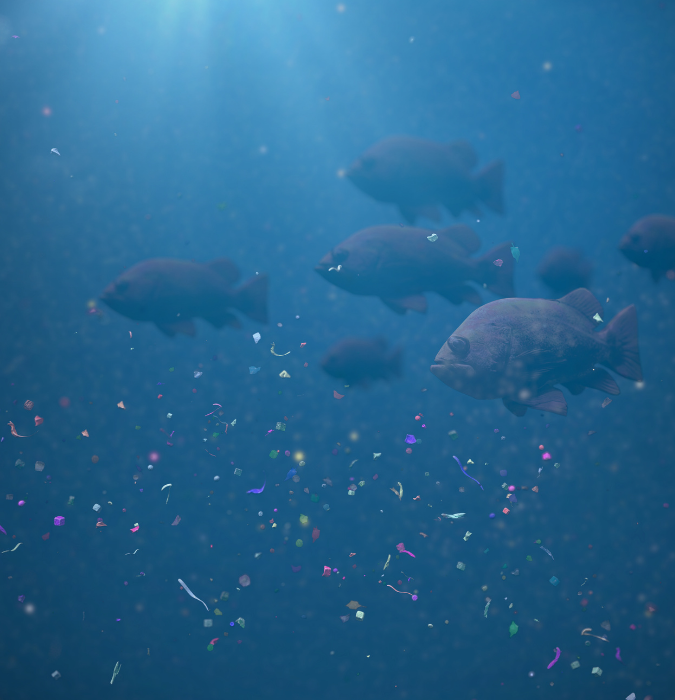 School of fish swimming in plastic and microplastic waste